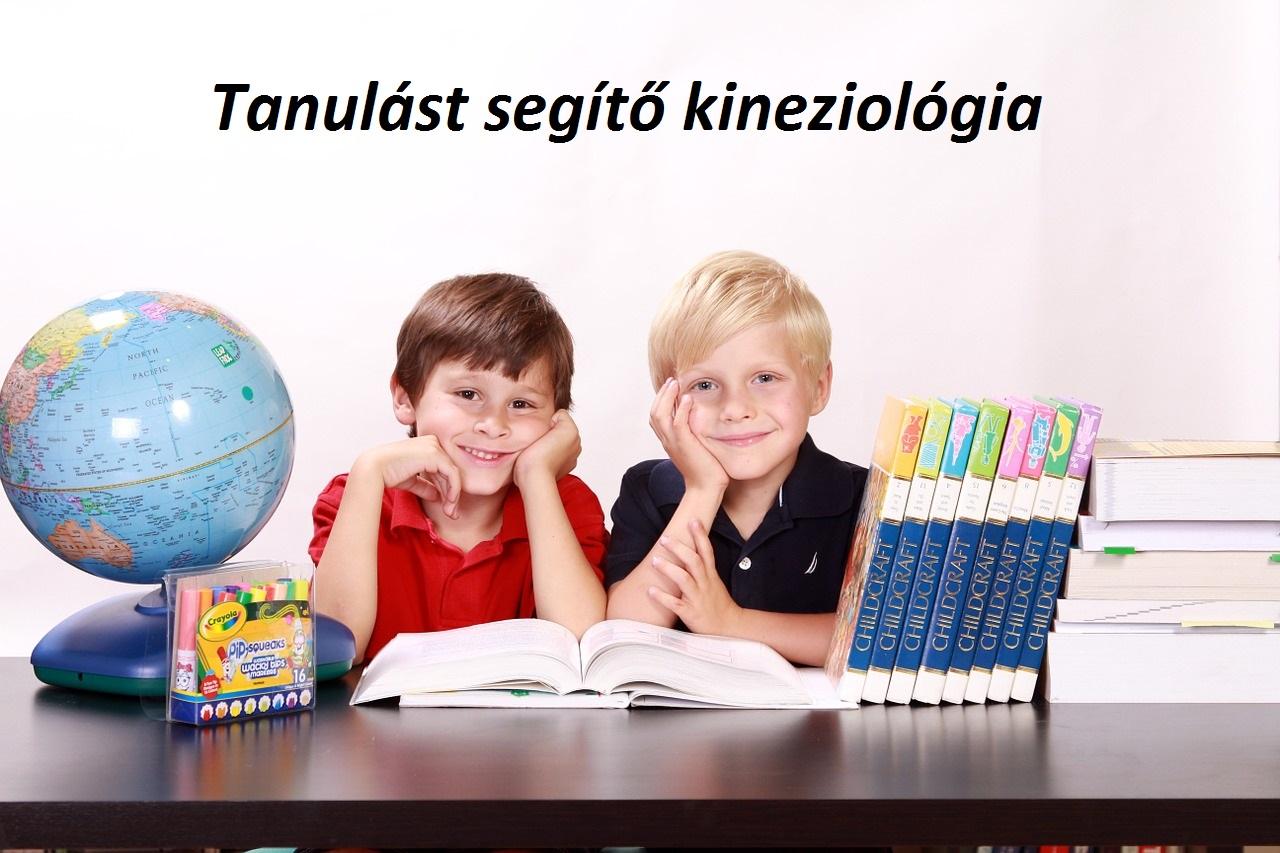 edu-kineziologia-2